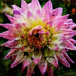 Flower Power Digital Fabric Four