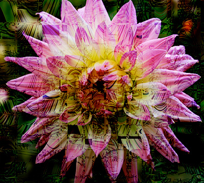 Digital Dahlia fabric