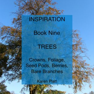 Inspiration ebook nine Trees